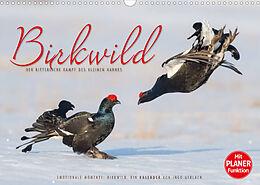 Kalender (Kal) Emotionale Momente: Birkwild (Wandkalender 2022 DIN A3 quer) von Ingo Gerlach