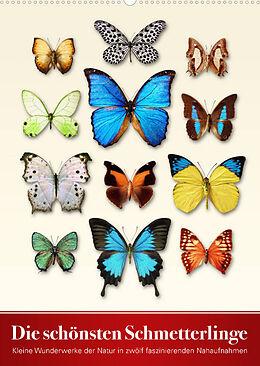 Kalender Die schönsten Schmetterlinge (Wandkalender 2022 DIN A2 hoch) von Wildlife Art Print