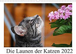 Kalender (Kal) Die Launen der Katzen 2022 (Wandkalender 2022 DIN A3 quer) von Anna Kropf