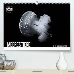Kalender Meerestiere Bilder in Schwarz Weiss (Premium, hochwertiger DIN A2 Wandkalender 2022, Kunstdruck in Hochglanz) von Dirk Meutzner