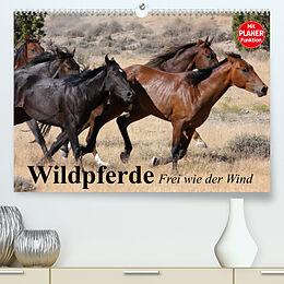 Kalender Wildpferde. Frei wie der Wind (Premium, hochwertiger DIN A2 Wandkalender 2022, Kunstdruck in Hochglanz) von Elisabeth Stanzer