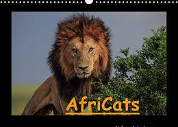 Kalender (Kal) AfriCats (Wandkalender 2022 DIN A3 quer) von Harald Pieta