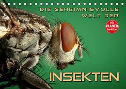 Kalender (Kal) Die geheimnisvolle Welt der Insekten (Tischkalender 2022 DIN A5 quer) von Renate Bleicher