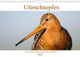 Kalender (Kal) Uferschnepfen - Die eleganten Vögel mit dem langen Schnabel (Wandkalender 2022 DIN A4 quer) von Christof Wermter
