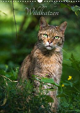 Kalender (Kal) Wildkatzen - scheue Jäger (Wandkalender 2022 DIN A3 hoch) von Cloudtail the Snow Leopard