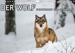 Kalender (Kal) DER WOLF - faszinierend und gefährlich (Wandkalender 2022 DIN A4 quer) von Christian Haidl - www.chphotography.de