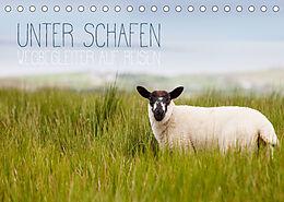 Kalender (Kal) Unter Schafen - Wegbegleiter auf Reisen (Tischkalender 2022 DIN A5 quer) von Lain Jackson