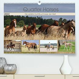 Kalender Quarter Horses - Die größte Zuchtbuchrasse der Welt (Premium, hochwertiger DIN A2 Wandkalender 2022, Kunstdruck in Hochglanz) von B. Mielewczyk
