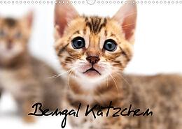 Kalender (Kal) Bengal Kätzchen (Wandkalender 2022 DIN A3 quer) von Sylke Enderlein - Bethari Bengals