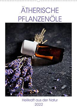 Cover: https://exlibris.azureedge.net/covers/9783/6735/1059/5/9783673510595xl.jpg