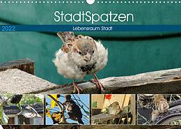 Kalender (Kal) StadtSpatzen (Wandkalender 2022 DIN A3 quer) von Linda Schilling