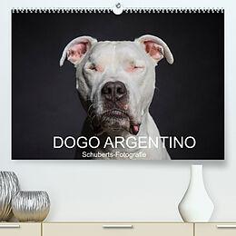 Kalender DOGO ARGENTINO (Premium, hochwertiger DIN A2 Wandkalender 2022, Kunstdruck in Hochglanz) von Schuberts-Fotografie