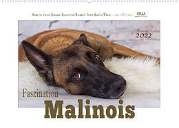 Kalender Faszination Malinois (Wandkalender 2022 DIN A2 quer) von Martina Wrede