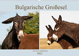 Cover: https://exlibris.azureedge.net/covers/9783/6735/8807/5/9783673588075xl.jpg