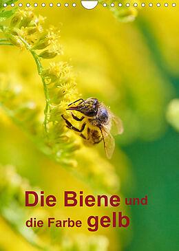Kalender (Kal) Die Biene und die Farbe gelb (Wandkalender 2022 DIN A4 hoch) von Mark Bangert