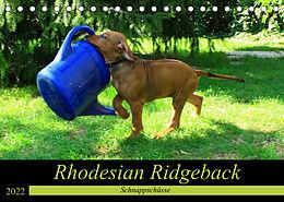 Kalender (Kal) Rhodesian Ridgeback - Schnappschüsse - (Tischkalender 2022 DIN A5 quer) von Dagmar Behrens