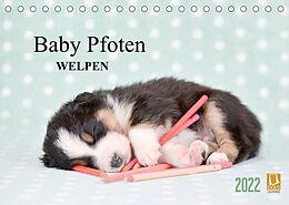 Kalender (Kal) Baby Pfoten (Tischkalender 2022 DIN A5 quer) von Natalie Eckelt