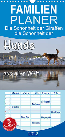 Cover: https://exlibris.azureedge.net/covers/9783/6736/6191/4/9783673661914xl.jpg