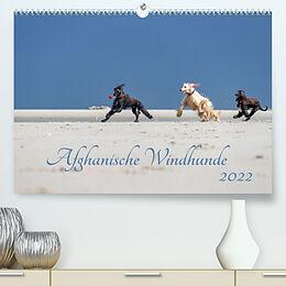 Kalender AFGHANISCHE WINDHUNDE 2022 (Premium, hochwertiger DIN A2 Wandkalender 2022, Kunstdruck in Hochglanz) von Annett Mirsberger annettmirsberger.de