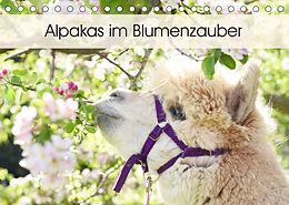Kalender (Kal) Alpakas im Blumenzauber (Tischkalender 2022 DIN A5 quer) von Heidi Rentschler