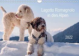 Kalender (Kal) Lagotto Romagnolo in den Alpen 2022 (Wandkalender 2022 DIN A4 quer) von wuffclick-pic