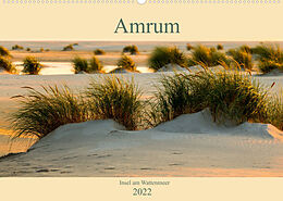Cover: https://exlibris.azureedge.net/covers/9783/6737/2302/5/9783673723025xl.jpg