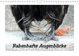 Kalender (Kal) Rabenhafte Augenblicke (Wandkalender 2022 DIN A4 quer) von Meike AJo. Dettlaff