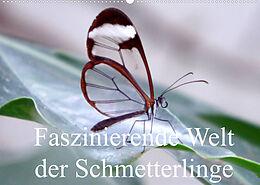 Kalender Faszinierende Welt der Schmetterlinge (Wandkalender 2022 DIN A2 quer) von Pocketkai