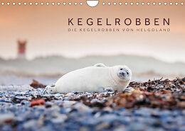 Cover: https://exlibris.azureedge.net/covers/9783/6737/5274/2/9783673752742xl.jpg