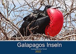 Kalender Tierwelt auf Galapagos (Wandkalender 2022 DIN A2 quer) von IAM photography