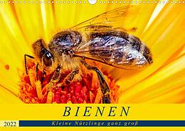 Kalender (Kal) BIENEN - Kleine Nützlinge ganz groß (Wandkalender 2022 DIN A3 quer) von Andrea Dreegmeyer