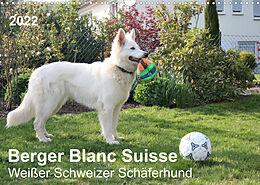 Kalender (Kal) Berger Blanc Suisse - Weißer Schweizer Schäferhund (Wandkalender 2022 DIN A3 quer) von Margarete Brunhilde Kesting