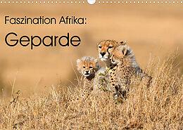 Kalender (Kal) Faszinaton Afrika: Geparde (Wandkalender 2022 DIN A3 quer) von Elmar Weiss