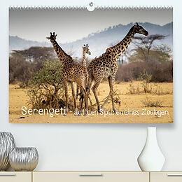 Kalender Serengeti - auf den Spuren eines Zoologen (Premium, hochwertiger DIN A2 Wandkalender 2022, Kunstdruck in Hochglanz) von Jürgen Maaß