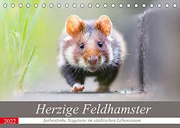 Kalender (Kal) Herzige Feldhamster - farbenfrohe Nagetiere im städtischen LebensraumAT-Version (Tischkalender 2022 DIN A5 quer) von Perdita Petzl