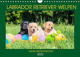 Kalender (Kal) Labrador Retriever Welpen - Kleine Weltentdecker (Wandkalender 2022 DIN A4 quer) von Sigrid Starick