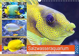 Kalender (Kal) Salzwasseraquarium. Meeresfische im heimischen Wohnzimmer (Wandkalender 2022 DIN A3 quer) von Rose Hurley