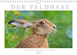 Kalender (Kal) Der Feldhase (Wandkalender 2022 DIN A4 quer) von Michael Breuer