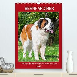 Kalender Bernhardiner - Mit dem St. Bernhardshund durch das Jahr (Premium, hochwertiger DIN A2 Wandkalender 2022, Kunstdruck in Hochglanz) von Sigrid Starick