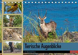 Kalender (Kal) Tierische Augenblicke in Südafrika (Tischkalender 2022 DIN A5 quer) von Norbert W. Saul