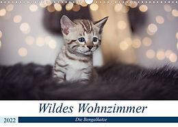 Kalender (Kal) Wildes Wohnzimmer - Die Bengalkatze (Wandkalender 2022 DIN A3 quer) von Robyn meets Elos Photography