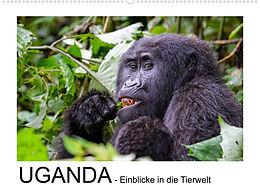 Kalender UGANDA - Einblicke in die Tierwelt (Wandkalender 2022 DIN A2 quer) von Thorsten Jürs
