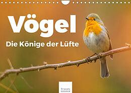 Kalender (Kal) Vögel - Die Könige der Lüfte (Wandkalender 2022 DIN A4 quer) von Benjamin Lederer