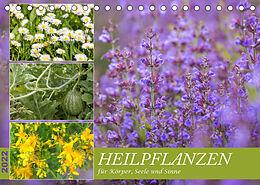 Kalender (Kal) Heilpflanzen für Körper, Seele und Sinne (Tischkalender 2022 DIN A5 quer) von NHV Theophrastus