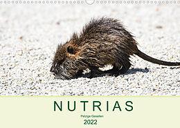 Kalender (Kal) NUTRIAS - Pelzige Gesellen (Wandkalender 2022 DIN A3 quer) von ROBERT STYPPA