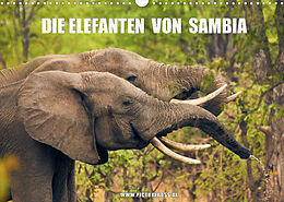 Kalender (Kal) Die Elefanten von Sambia (Wandkalender 2022 DIN A3 quer) von Jens Esch