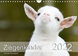Kalender (Kal) Ziegenkinder (Wandkalender 2022 DIN A4 quer) von Carola Schubbel