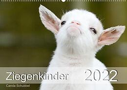 Kalender Ziegenkinder (Wandkalender 2022 DIN A2 quer) von Carola Schubbel