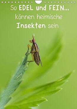 Kalender So EDEL und FEIN... können heimische Insekten sein (Wandkalender 2022 DIN A4 hoch) von Karin Berger (Kabefa)