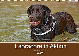 Kalender Labradore in Aktion (Wandkalender 2022 DIN A2 quer) von Claudia Kleemann